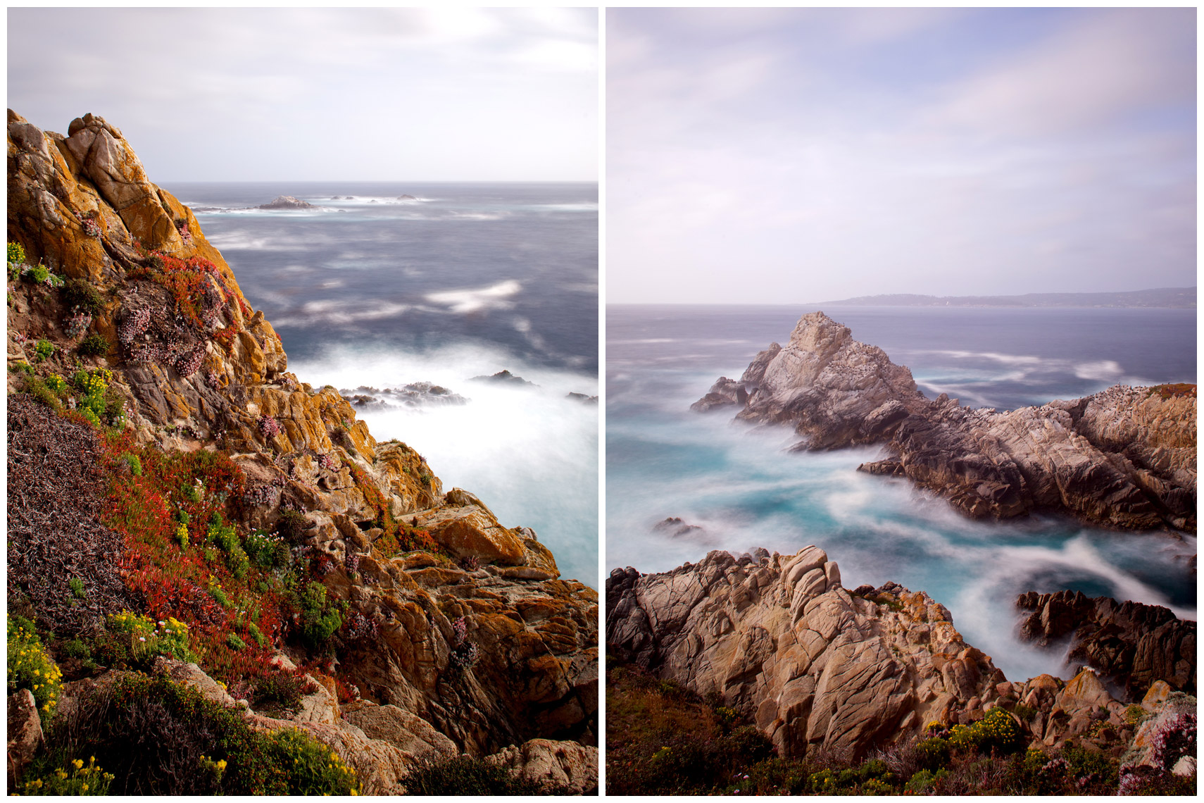 Point Lobos State Reserve in Carmel, California